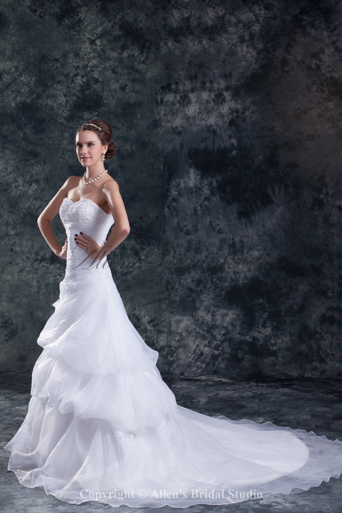 /850-6813/organza-sweetheart-neckline-chapel-train-mermaid-embroidered-wedding-dress.jpg