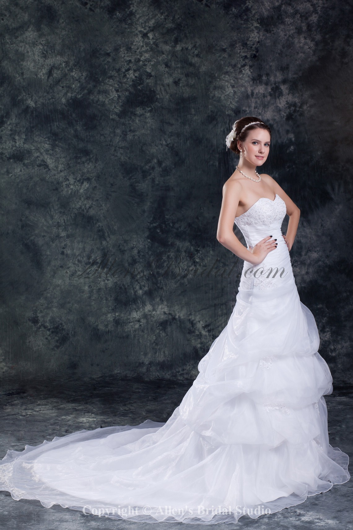 /850-6814/organza-sweetheart-neckline-chapel-train-mermaid-embroidered-wedding-dress.jpg