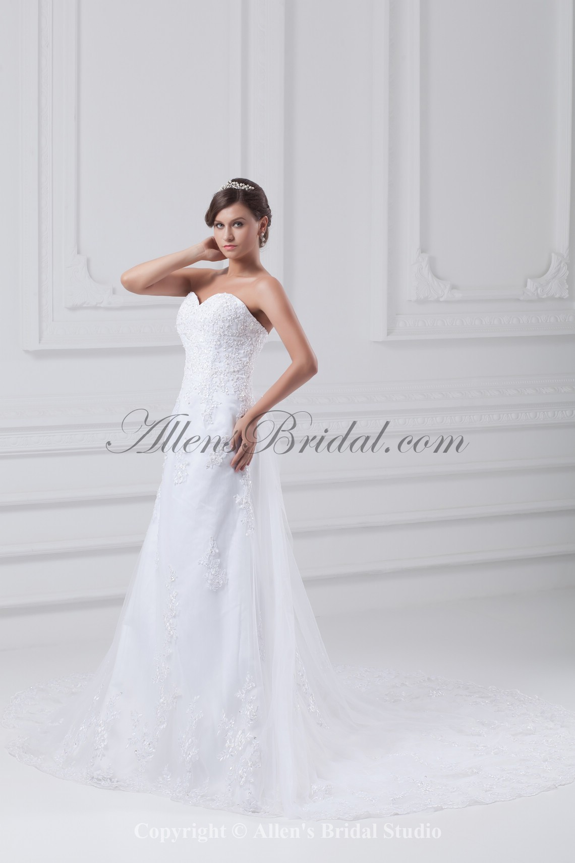 /875-7013/net-sweetheart-neckline-chapel-train-a-line-embroidered-wedding-dress.jpg