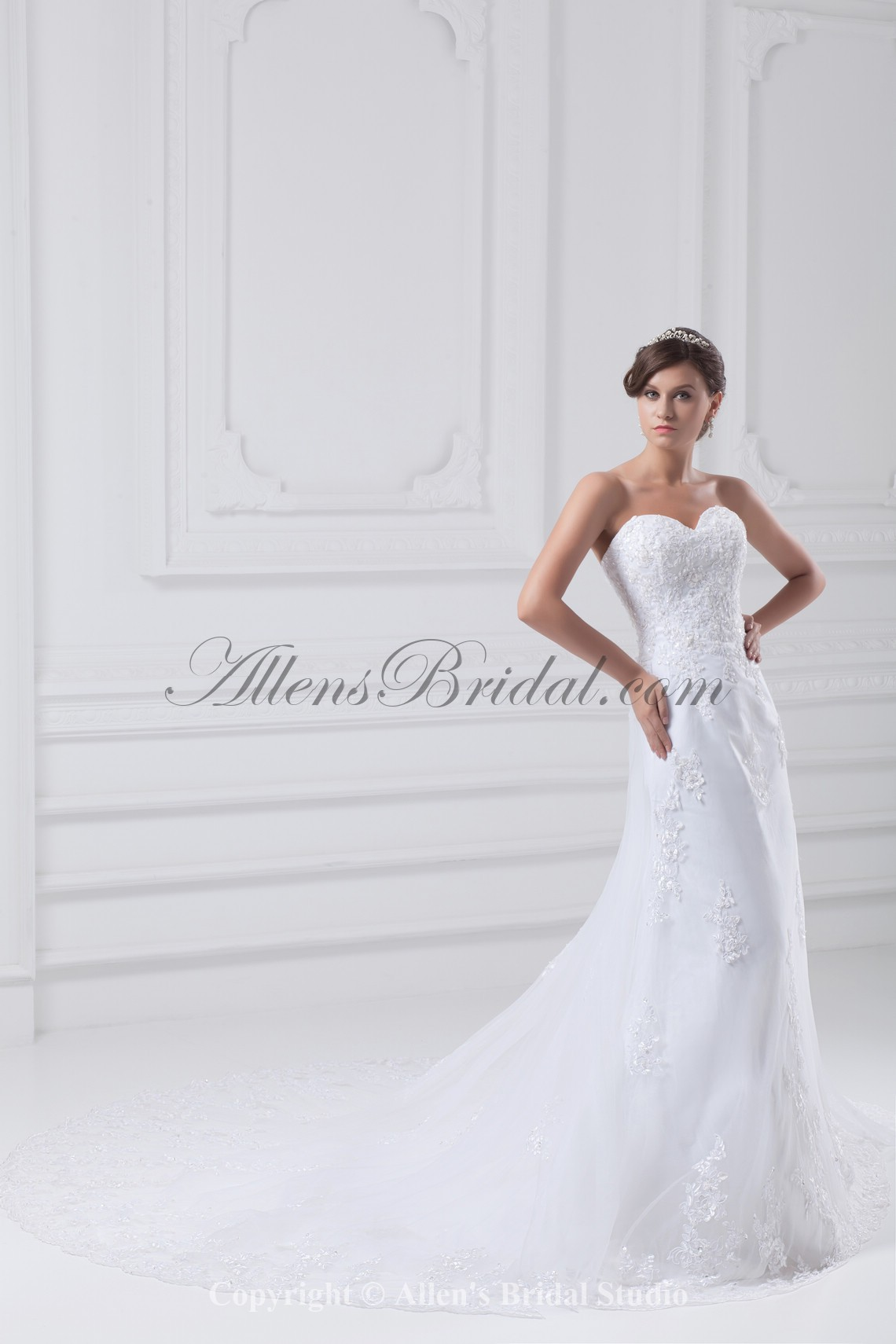 /875-7014/net-sweetheart-neckline-chapel-train-a-line-embroidered-wedding-dress.jpg